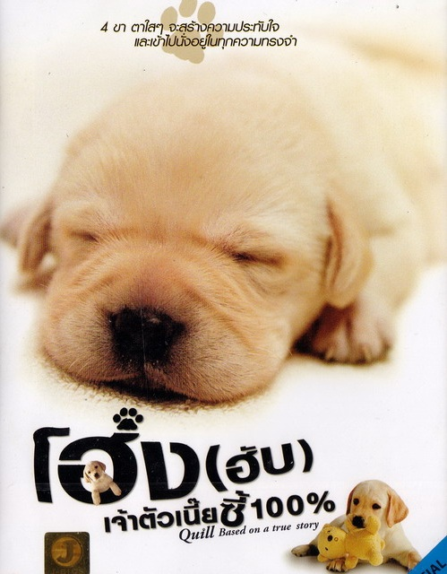 Quill The Life of a Guide Dog (2004)   โฮ่ง(ฮับ) เจ้าตัวเนี้ยซี้ร้อยเปอร์เซ็นต์ [พากย์ไทย]