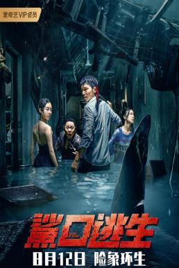 โคตรฉลามคลั่ง (2021) บรรยายไทย